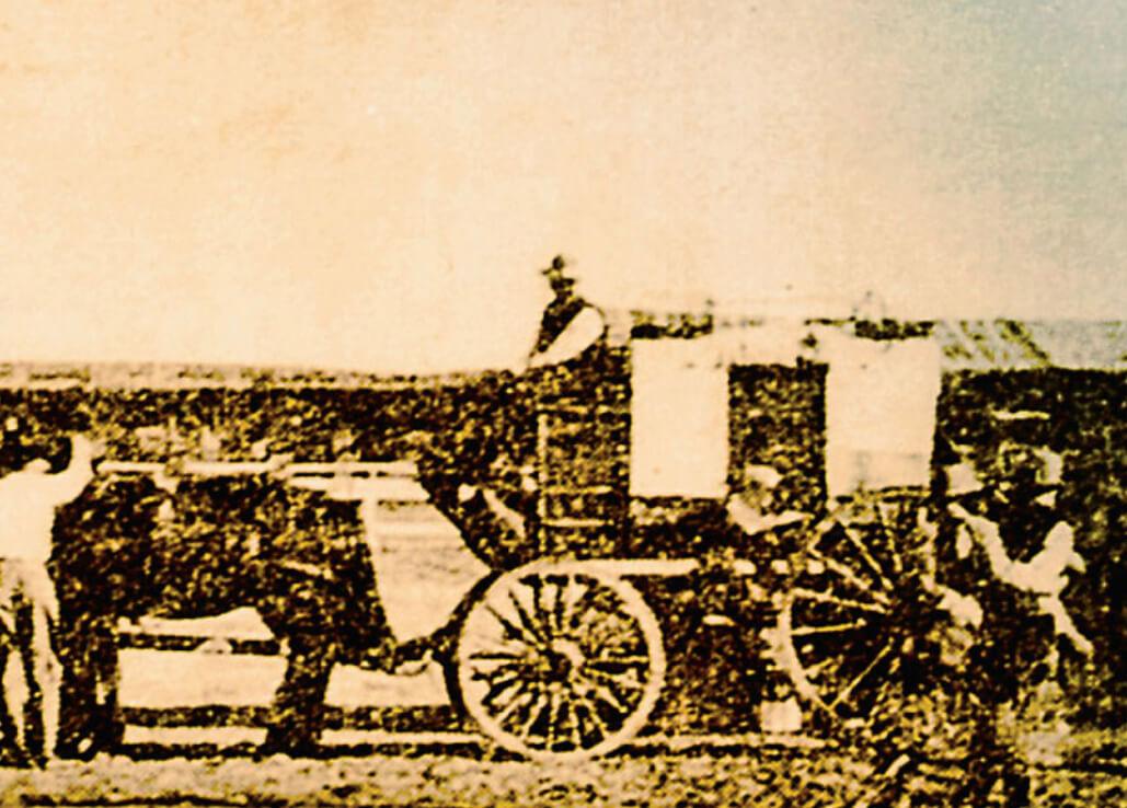 Vintage Horse & Cart Photo
